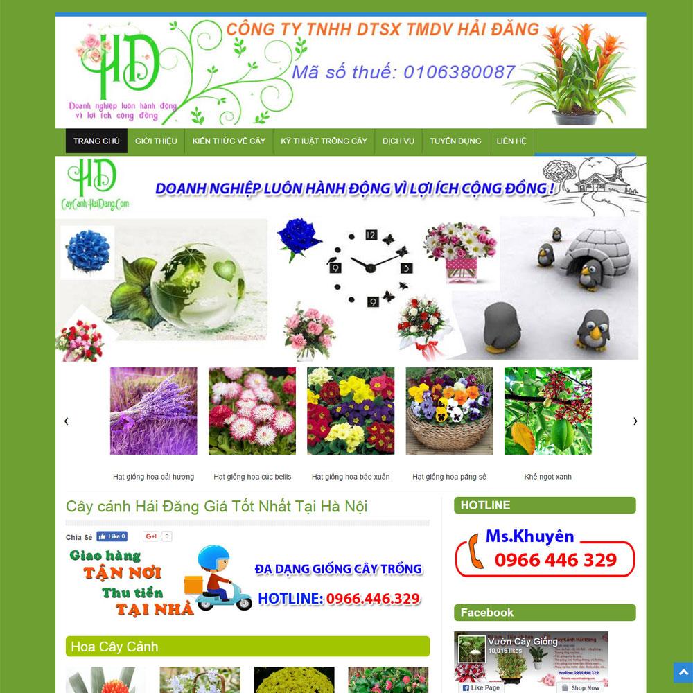 Website Cay Canh Hai Dang