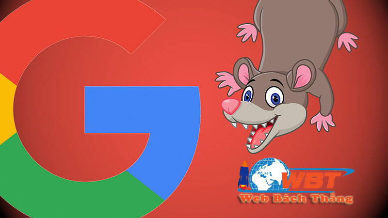 Google cập nhật thuật toán Possum