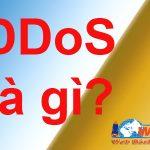DDoS Là Gì? Và đặc điểm Giúp Bạn Biết Web Của Bạn đang Bị Tấn Công