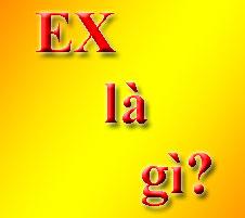 Ex Là Gì