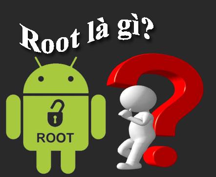 root là gì