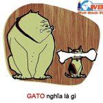 GATO là gì? GATO có những nghĩa là gì? mà được sử dụng nhiều trên FB