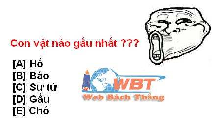 câu hỏi troll