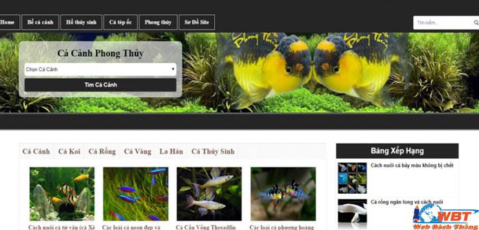 thiết kế website bán cá cảnh, bể cá , cây thủy sinh