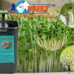 Thiết kế website bán máy làm giá – rau mầm đẹp giá rẻ bảo hành trọn đời