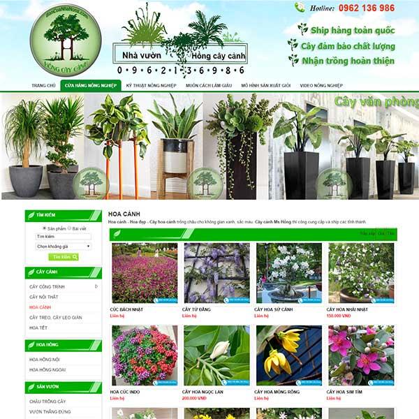 Mẫu Website Bán Hoa Và Cây Cảnh đẹp WBT1099