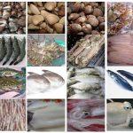 Thiết kế website bán hải sản giá rẻ và chất lượng nhất tại Hà Nội