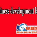 Business Development Là Gì? Và Công Việc Chính Là Làm Gì?