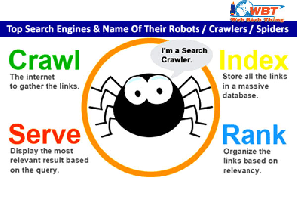 cau-tao-Search-Engines