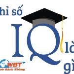 Chỉ Số IQ Là Gì? Sự ảnh Hưởng Của IQ Tới đời Sống Con Người